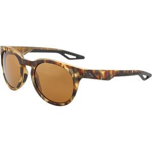 100% Campo Glasses soft tact havana | bronze peakpolar soft tact havana | bronze peakpolar
