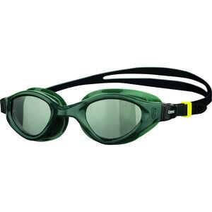 arena Cruiser Evo Brille smoked/army/black smoked/army/black