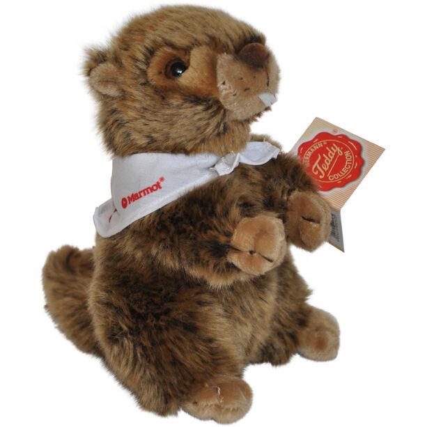 Marmot Cuddling Small brown