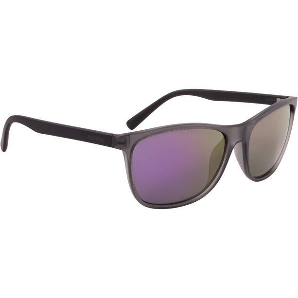 Alpina Jaida Glasses grey transparent matt