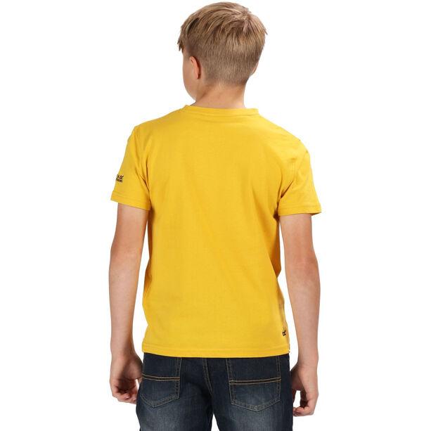 Regatta Bosley II T-Shirt Jungen old gold