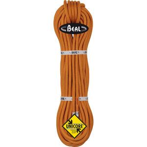 Beal Wall Master 6 Unicore Rope 10,5mm 50m orange orange