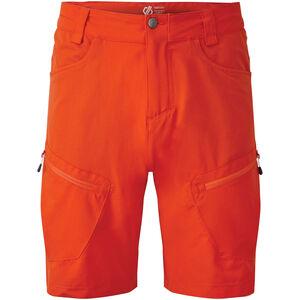 Dare 2b Tuned In II Shorts Herren trail blaze trail blaze