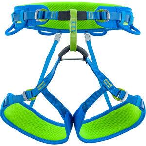 Climbing Technology Wall Seat Harness green/blue green/blue