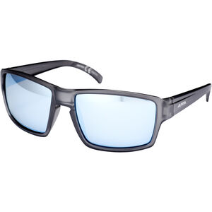 Alpina Melow Glasses grey transparent matt grey transparent matt