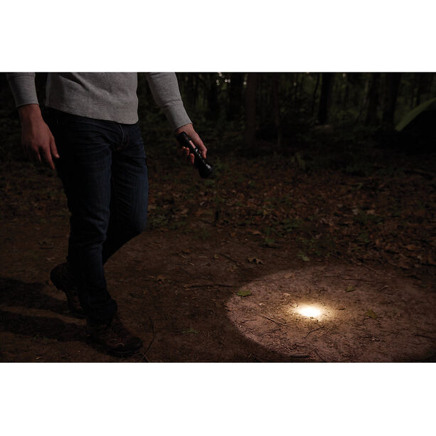 Coleman BatteryGuard Taschenlampe 350 Lumen schwarz