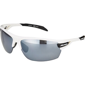 Alpina Tri-Scray Brille white-black white-black