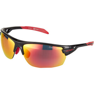 Alpina Tri-Scray Brille black-red black-red