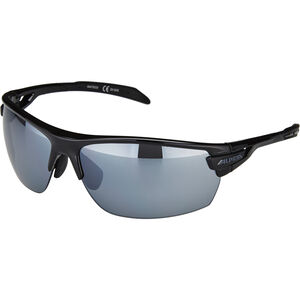 Alpina Tri-Scray Brille black black