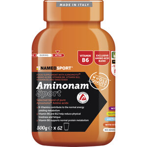 NAMEDSPORT Aminonam Drink 500g None