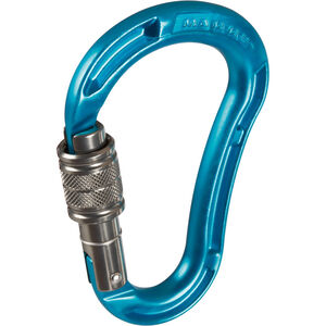 Mammut Bionic Mytholito Karabiner Screw Gate aqua aqua
