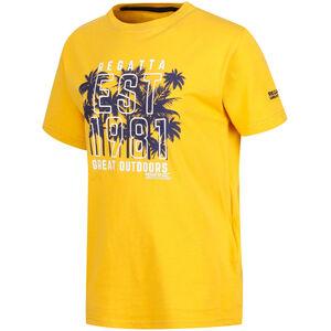 Regatta Bosley II T-Shirt Jungs old gold old gold