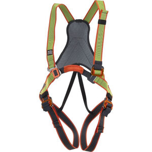 Climbing Technology Jungle Full Body Harness Kinder green/grey green/grey