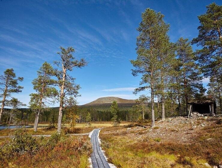 Ansicht der Landschaft auf dem Fernwanderweg Südlicher Kungsleden