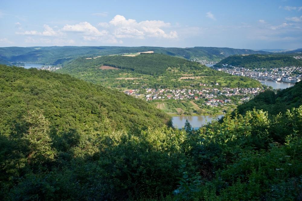 Wandern im Frühling - Rheinsteig