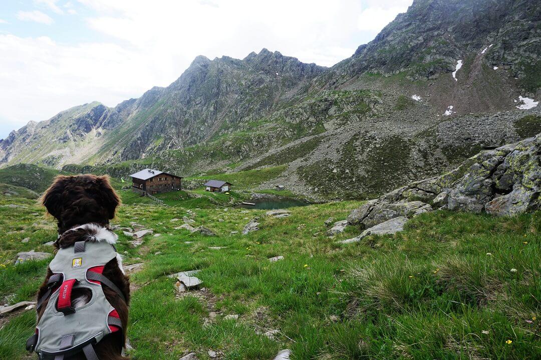 Pfunderer Höhenweg Etappe 5 - Ausblick auf Tiefrastenhütte