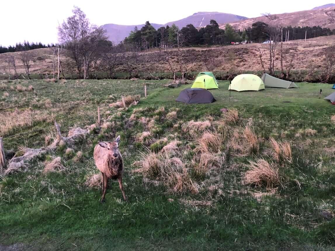 West Highland Way - Tag 5 - Inveroran Hotel