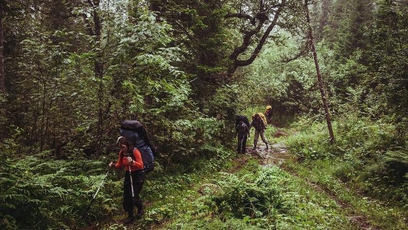 Spurlos in der Natur unterwegs: Die 7 Prinzipien von Leave No Trace