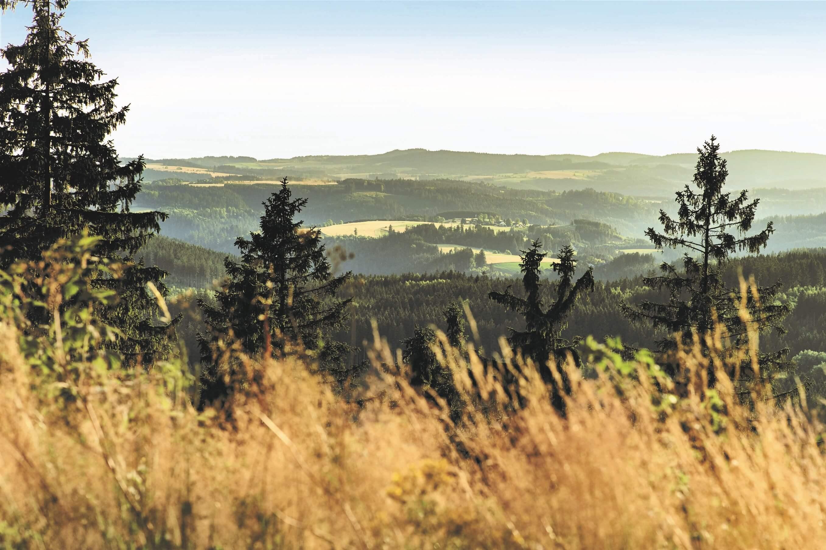 Panorama Aussicht beim Trekking im Frankenwald