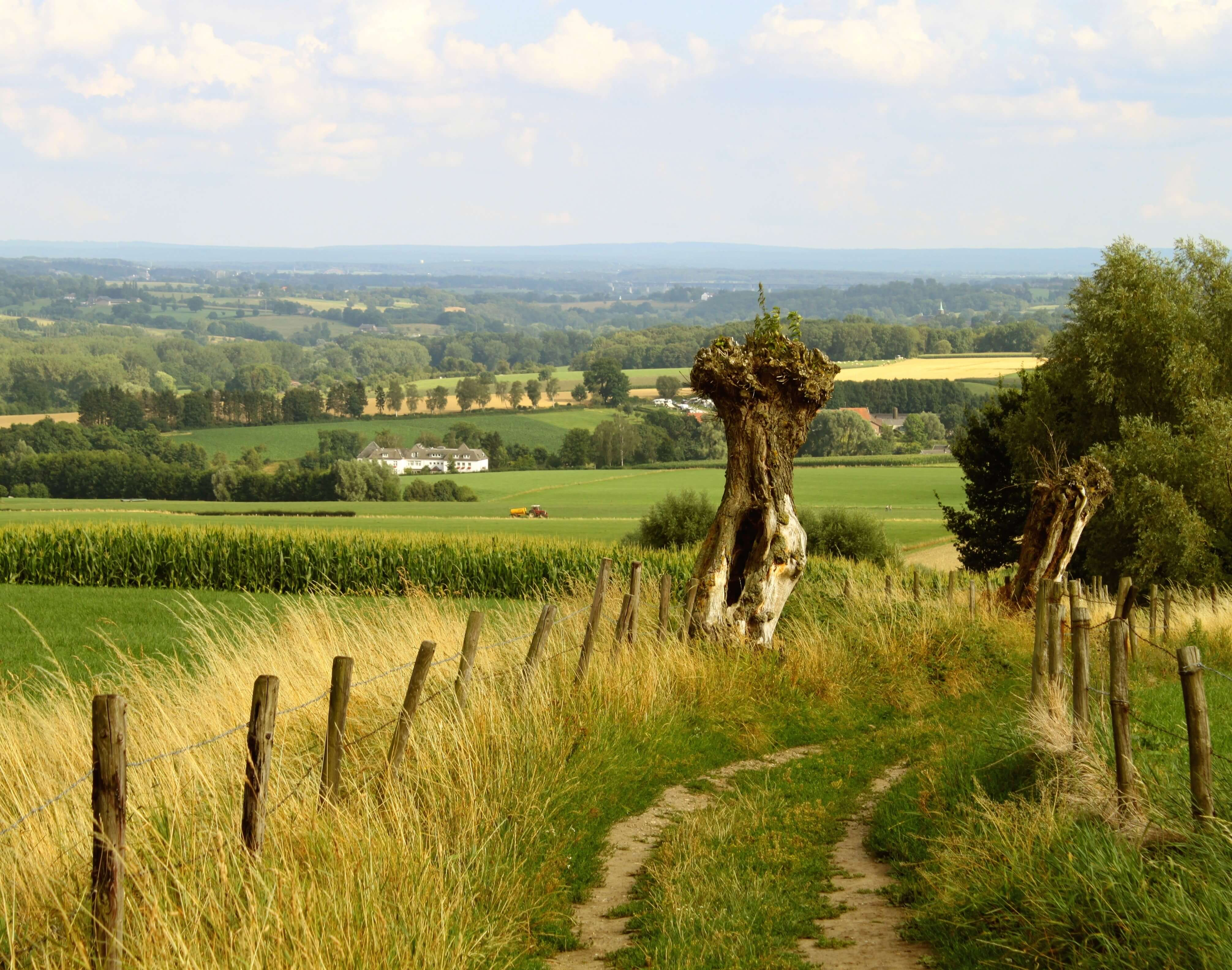 Trail d'Orval