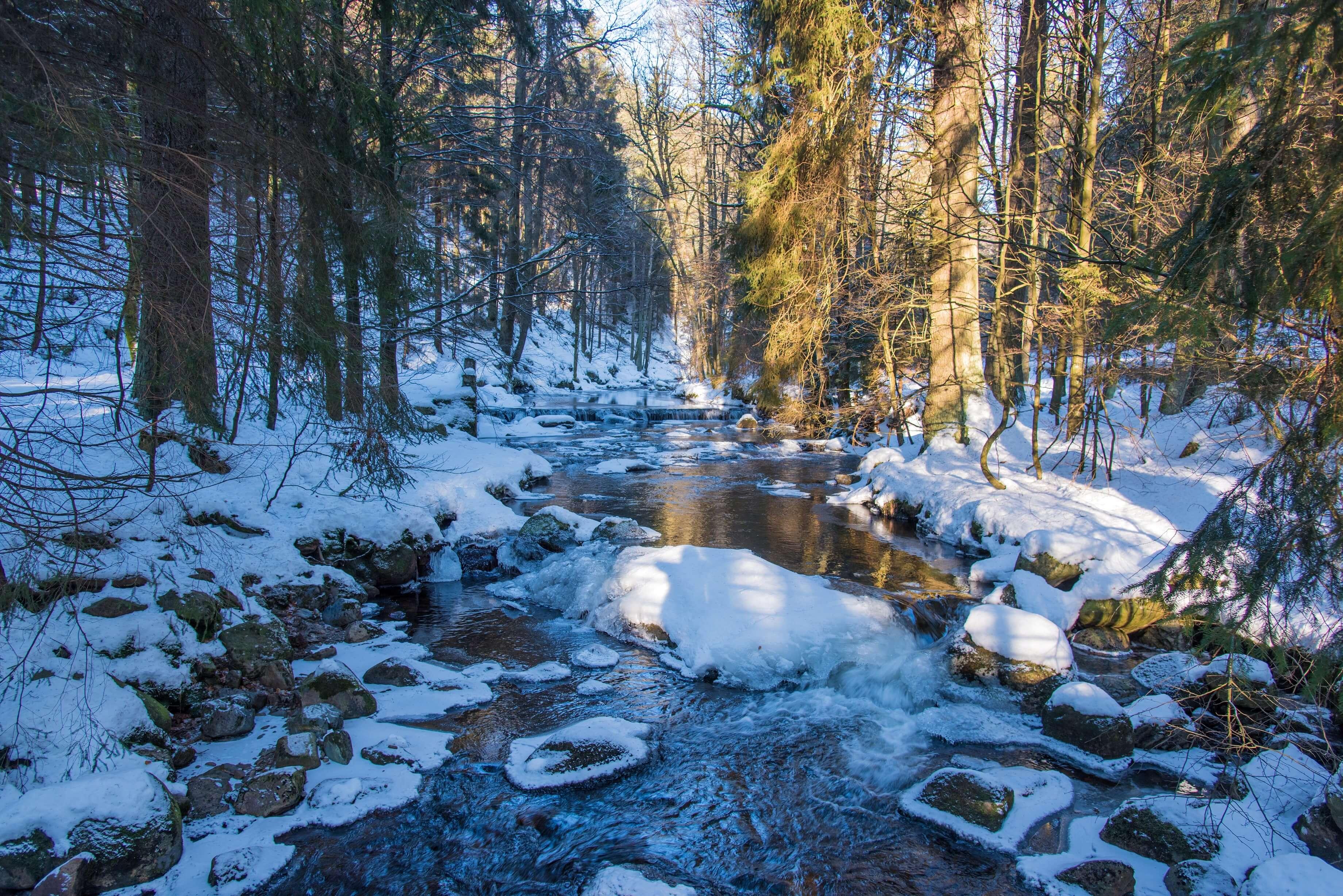 Das romantische Elendstal im Winter