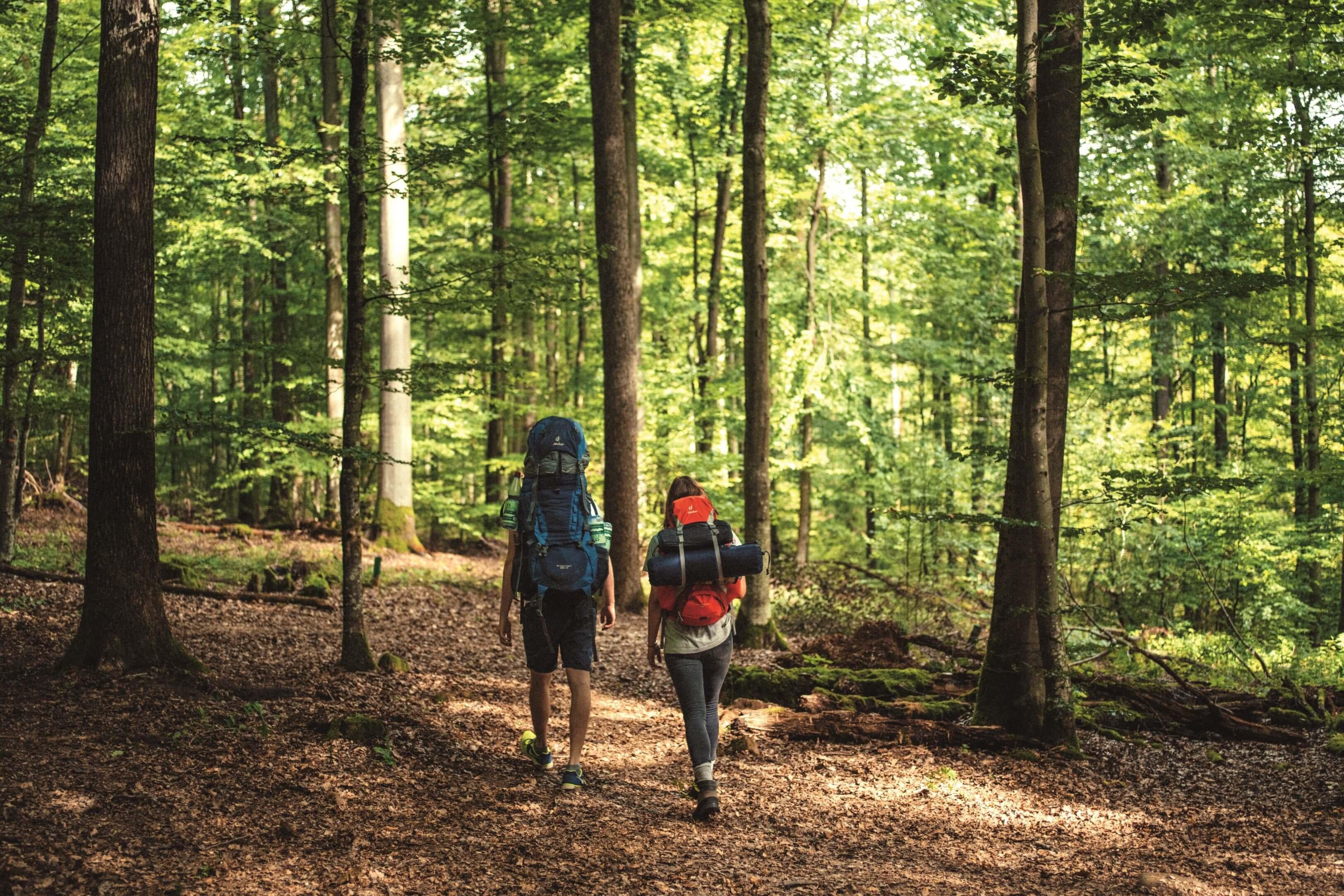 Trekking Deutschland: Spessart