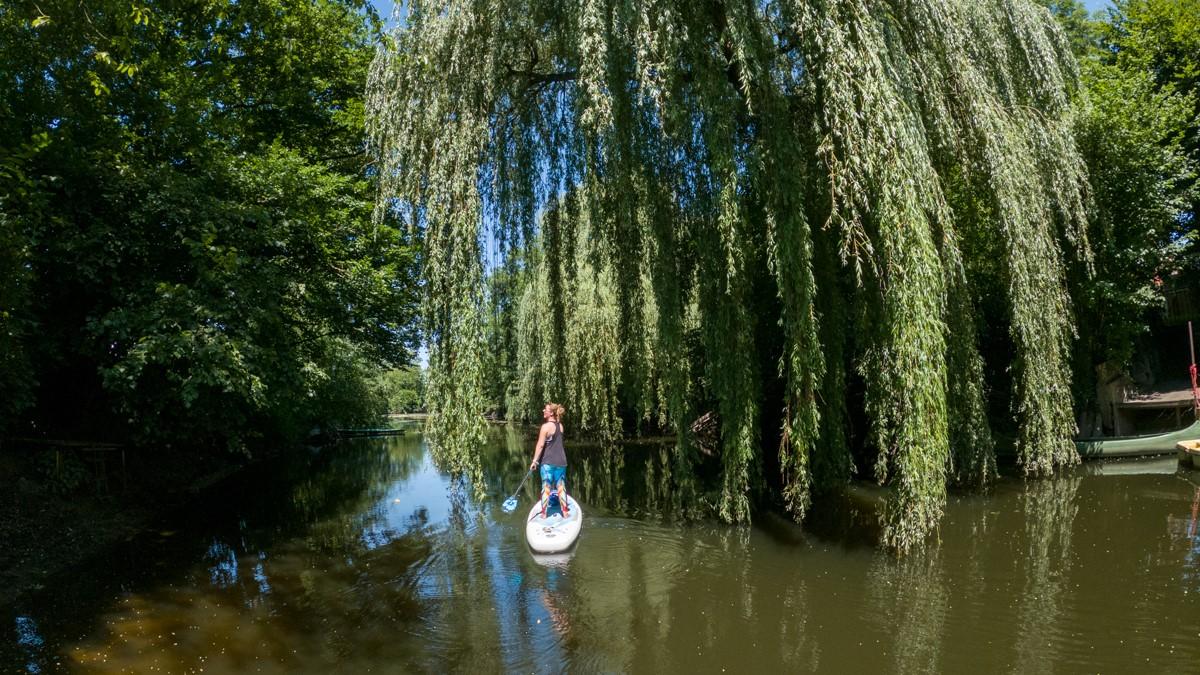 SUP-Tour auf der Werse durchs Münsterland