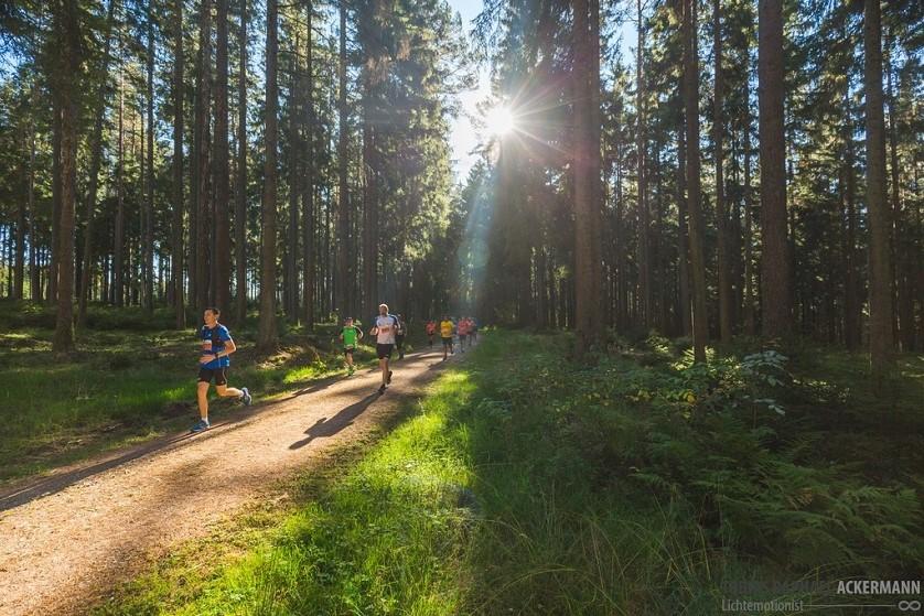 Läufer rennen durch den Wald