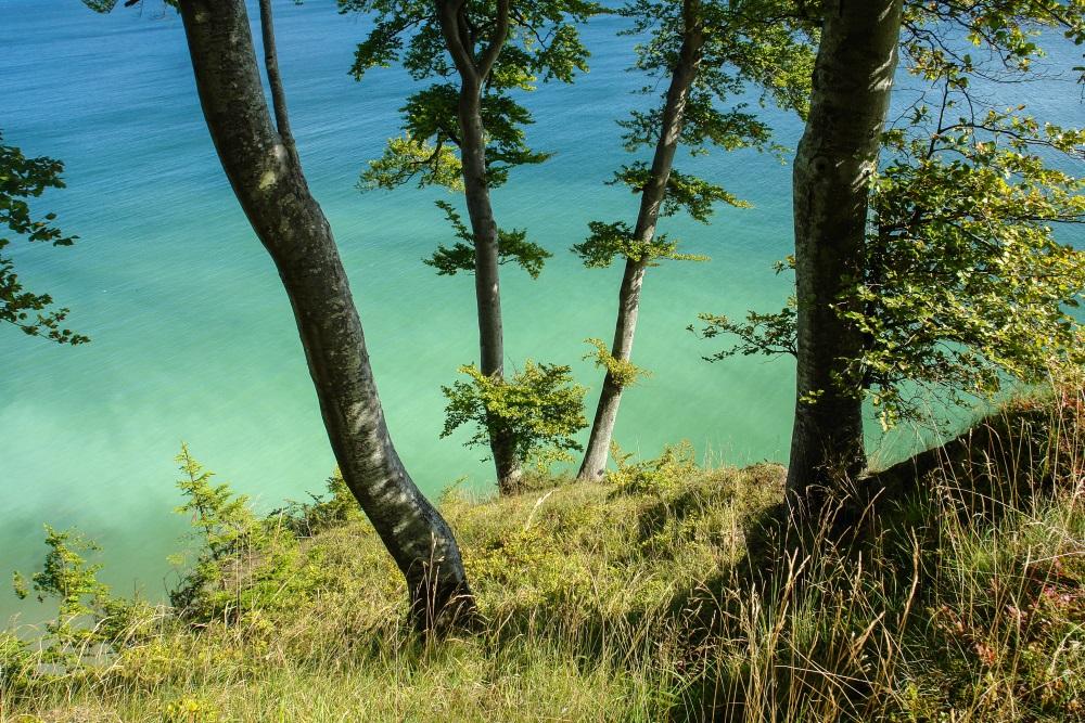 Wandern im Frühling - Hochuferweg auf Rügen