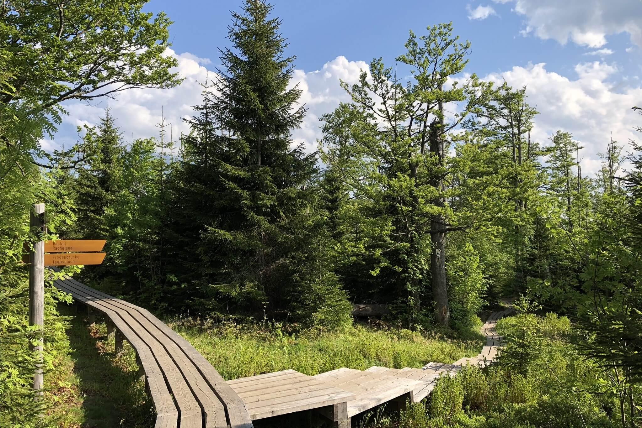 Nationalpark Bayerischer Wald - Wanderweg zum Rachelsee