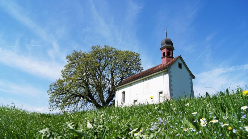 Wandern im Frühling - Waldstätterweg, 7. Etappe Beckenried – Rütli
