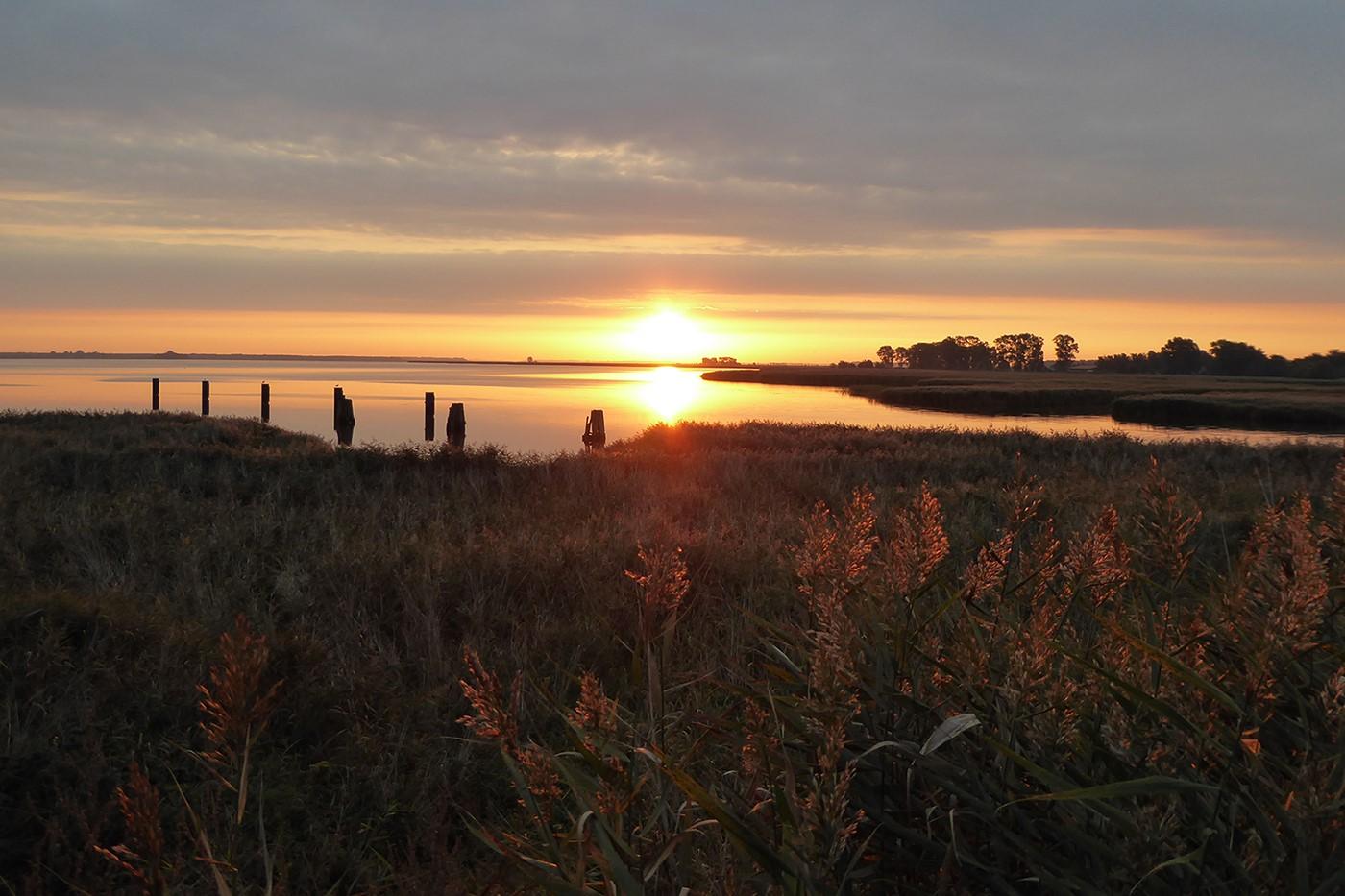 Nationalpark Vorpommersche Boddenlandschaft - Sonnenuntergangsstimmung