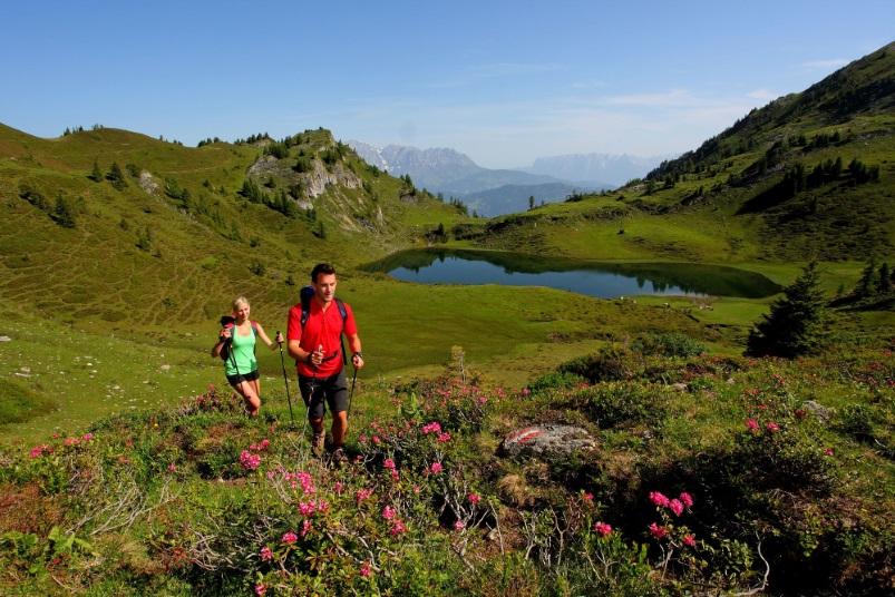 Wandern Frühling - Salzburger Almenweg Großarltal