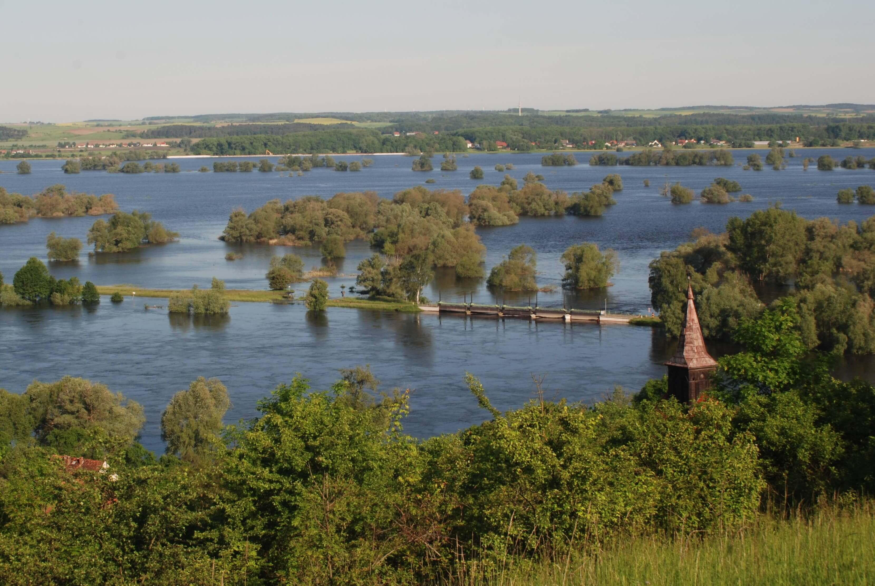 Nationalpark Unteres Odertal - Ausblick Frühjahrsflutung
