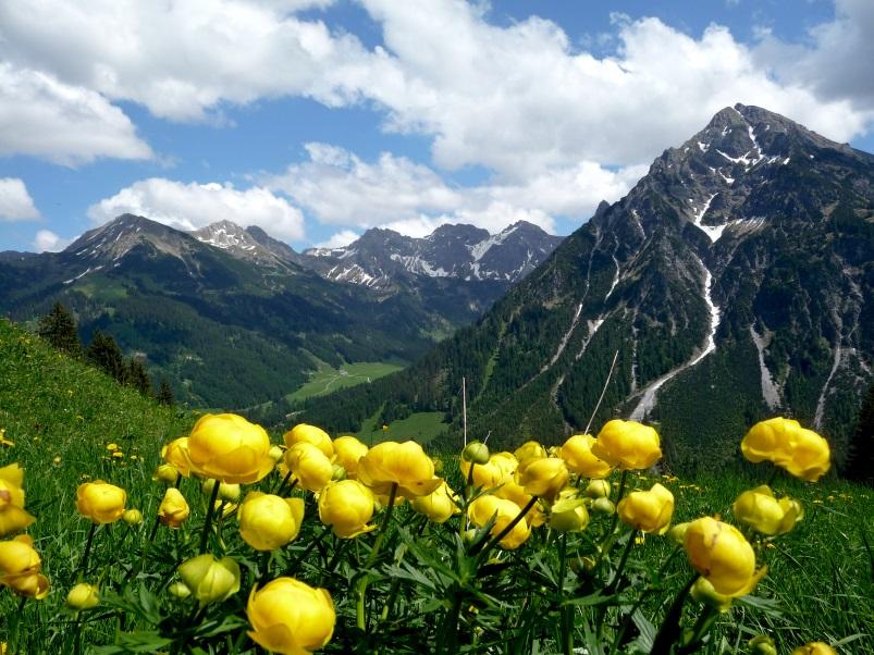 Wandern im Frühling - Rundweg Wildental, Kleinwalsertal