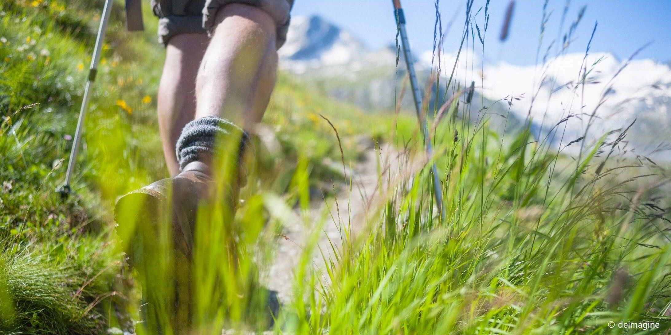 Fernwanderwege - Die besten Alternativen zum Jakobsweg