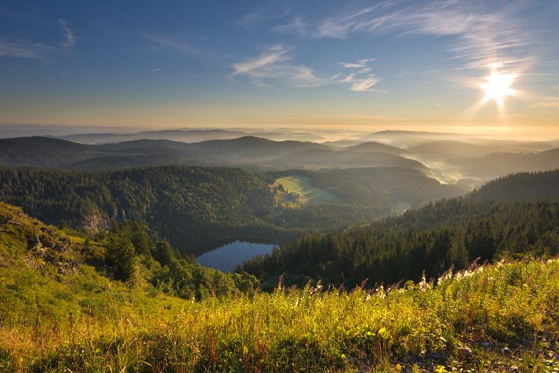 Wandern im Frühling - Feldbergsteig im Schwarzwald