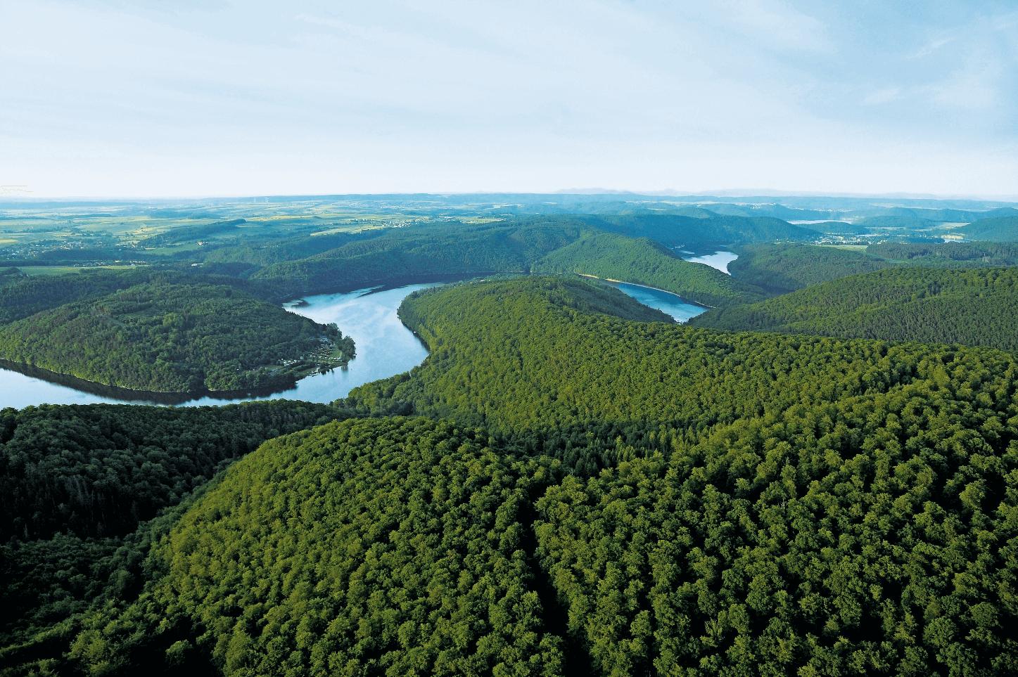 Nationalpark Kellerwald-Edersee - Edersee mit Buchenmeer