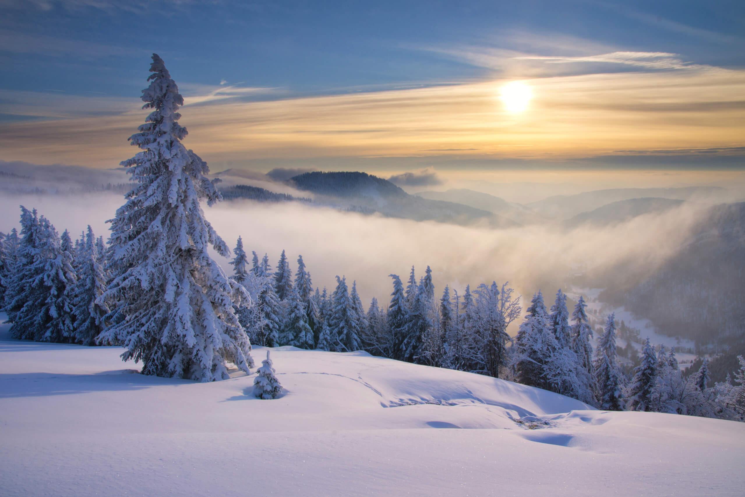 Feldberg Ausblick im Winter