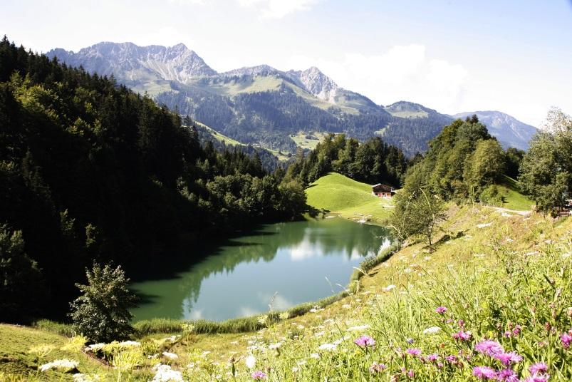 Wandern im Frühling - Seewaldsee, Wandern im Großwalsertal