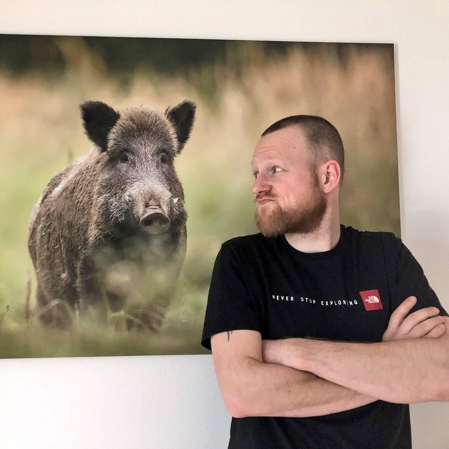 Portrait Sascha von Trailrunners Dog